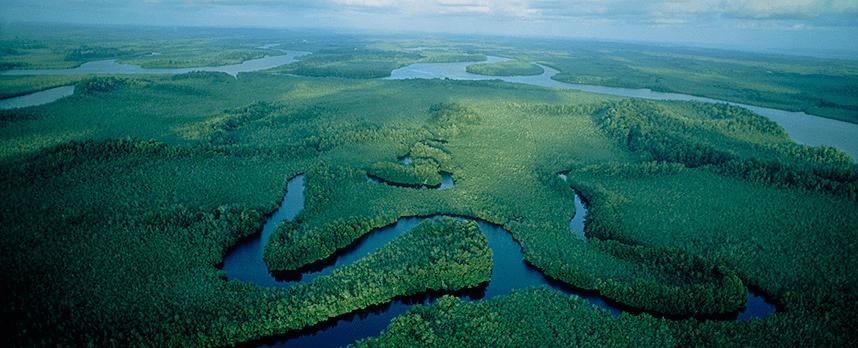 Congo Basín